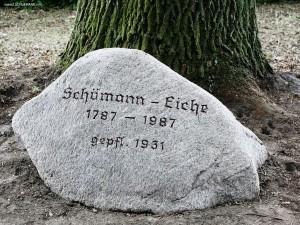 Gedenkstein an der Schuemann-Eiche